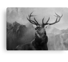 Head Deer In Black And White Canvas Print