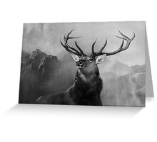 Head Deer In Black And White Greeting Card