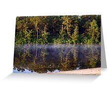 Bald Eagle Over Harry Wright Lake Greeting Card