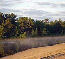 Bald Eagle Leaves Harry Wright Lake  by Paul Gitto