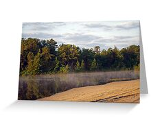 Bald Eagle Leaves Harry Wright Lake  Greeting Card
