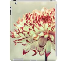 Hold onto the Light iPad Case/Skin