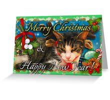 mistletoe kitty Christmas cards Greeting Card