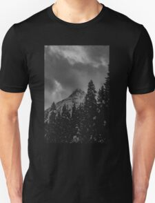 North Cascade Winter Blizzard Unisex T-Shirt