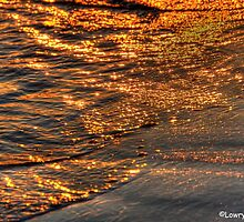 Golden Water (View Large) by BarbL