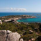 Bruzzi ( Corse du Sud) by Alessandra Antonini