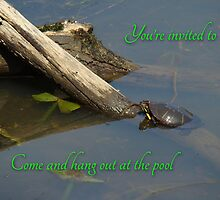 Pool Party Invitation - Turtle on Log by MotherNature2