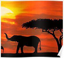 kenya wildlife Poster