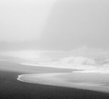 Fog & Beach, Goat Rock, CA by Thomas Barber