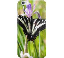 Pale Tiger Swallowtail Butterfly - iPhone Case iPhone Case/Skin