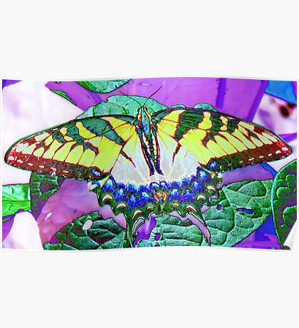 Foil Butterfly Poster