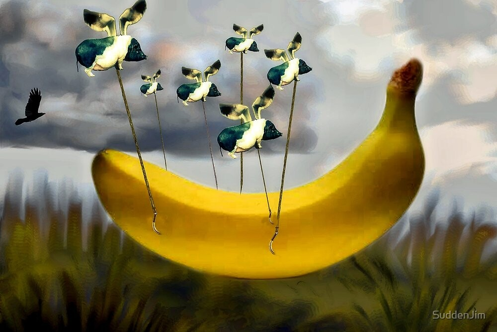 When Pigs Fly With Bananas by SuddenJim