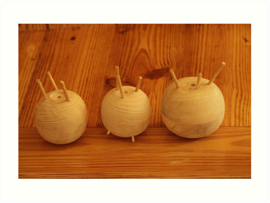 The Onion Family by Thomas Murphy