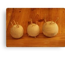 The Onion Family Canvas Print
