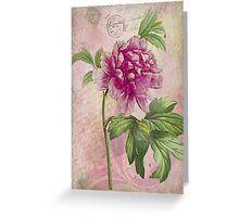Vintage Pink Peony & French Ephemera Print - French Script and Peony Illustration Greeting Card