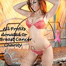 Hot Bikinis by Breast Cancer  Foundation