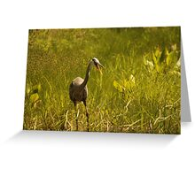 Urban 'Great Blue Heron' say's Hello! Greeting Card