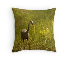 Urban 'Great Blue Heron' say's Hello! Throw Pillow