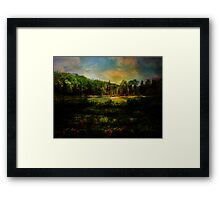 Light on the Marsh Framed Print
