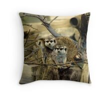 Meerkats, Mongoose, African Wildlife, Animals Throw Pillow
