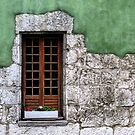 Windows 4 by photonista