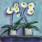 Orchids by Joanie Springer
