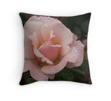 Rose and Rain 1 Throw Pillow