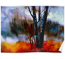 The Grove...Morning Mist Poster
