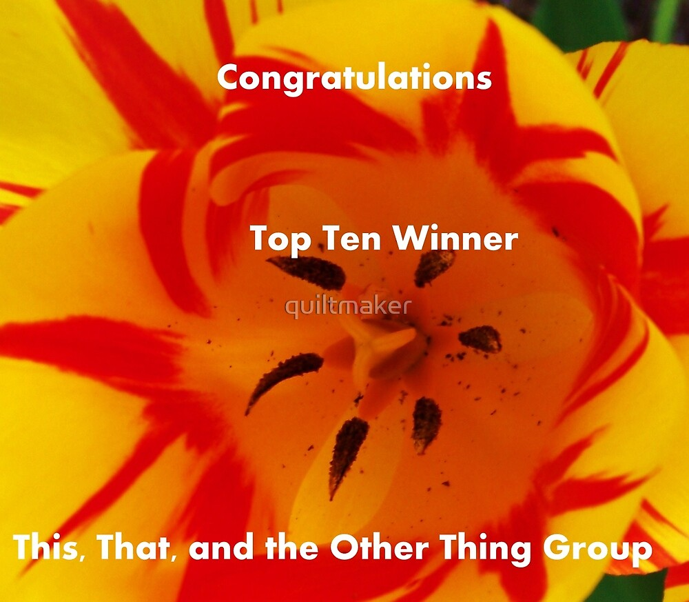 Banner - Top Ten - Tulips by quiltmaker
