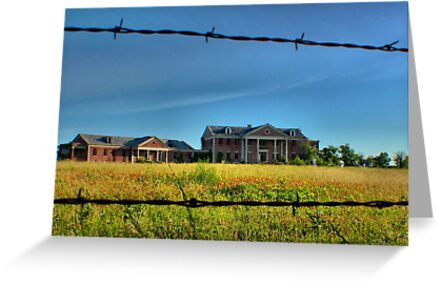 Through the Fence by aprilann