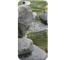 Cairn In Nature iPhone Case/Skin