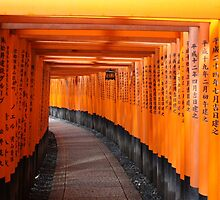 Fushimi Inari Shrine by Connor Paul