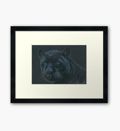 Panther colour pencil art Framed Print