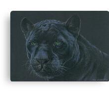 Panther colour pencil art Canvas Print