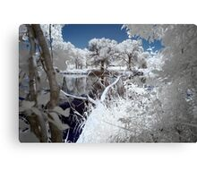 Infrared One Canvas Print
