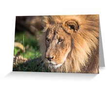 Hubert the Lion Greeting Card
