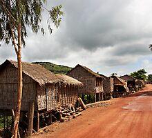 Cambodia - Lake Tonl'e Sap - #01 by Malcolm Heberle