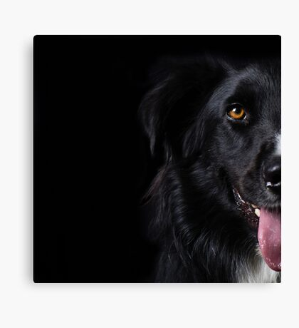 Half a dog Canvas Print