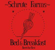 Schrute Farms B&B by d3mentia