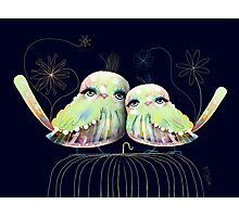 Little Love Birds Photographic Print