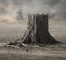 Wooden Castle by KLIMAS