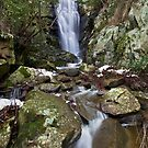 Glen Gobel Falls by Travis Easton