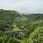 Monsal Dale, Derbyshire by Paul Woloschuk