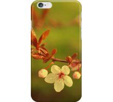 Summer cherry blossom iPhone Case/Skin