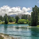 Spawning River near Lake Hawea by Larry Lingard-Davis