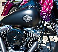 Harley by INFIDEL