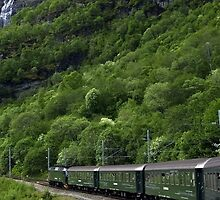 The Flam railway by Steve plowman