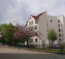 BEUTIFUL BUILDING IN GERMANY-ROSTOCK by konkan