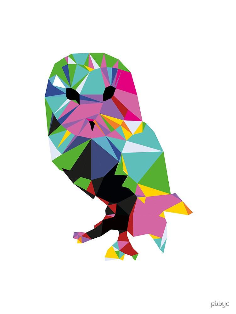 pbbyc - Triang-Owl by pbbyc