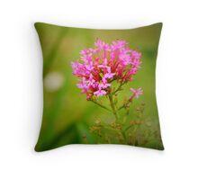 Valerian Flowers Throw Pillow